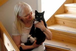 Lille Pysen är en av Lisas och Lennarts två katter.