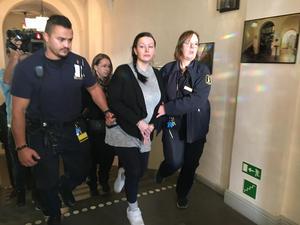 Under dag 13 i rättegången i Hovrätten mot morddömda Johanna Möller riktade försvarsadvokat Amanda Hikes kritik mot utredningen.