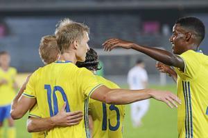 Svenska fotbollslandslaget beskrivs som ett disciplinerat lag.