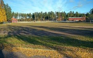 Kommunalrådet Annette Riesbeck vill att man utreder om Prästskogsvallen kan bli ett fritidscentrum. Foto: Per Malmberg/DT