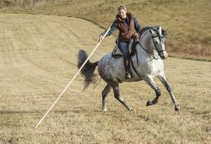 Sofia liknar träningen med den spanska staven som en dans med hennes häst Sol.