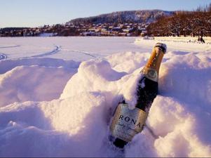 Champagneflaska kvarglömd i naturen efter nyår. Denna glasflaska ska sorteras som färgat glas. Korken däremot finns det ingen i Sverige som samlar in.