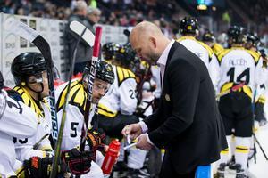 Tommy Sjödin och Brynäs är redo för mötet med Luleå. Bild: Michael Erichsen / BILDBYRÅN