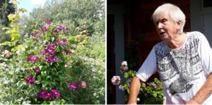 Britt Åström välkomnade PRO:arna in i sin trädgård.