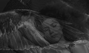 Genom mötet mellan ängeln Damiel (Bruno Ganz) och kvinnan Marion (Solveig Dommartin) förenas det himmelska och jordiska. Foto: Pressbild/Wim Wenders Stiftung
