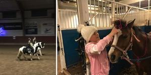 Blomman blev årets häst när Örebro Fältrittklubb hade Julshow i Karlslund, här tas hon om hand av skötaren Märta Ekstrand. Foto: Stellan Norén och Eva Ejdeholt