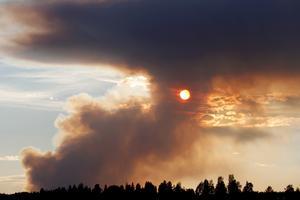 Skogsbrand vid Kårböle. Foto: Mats Andersson/TT