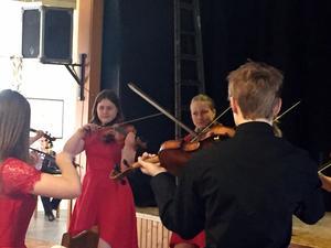 Fin underhållning vid Borlänge HjärtLungs medlemsmöte. Foto: Privat