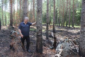 Här har det brunnit alldeles bredvid Gösta Axelssons skog i Möklinta.
