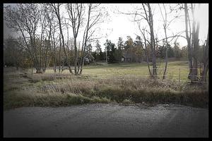 Ett par av grannarna på Furusundsvägen hade regelbundna