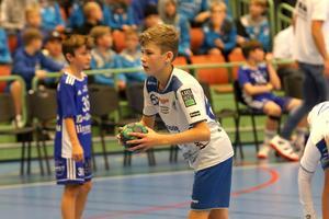 Det blir ingen Skadevi Handbollscup det här året. Bilden är från fjolårets finaldag i Arena Skövde.