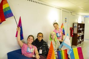 Flaggan i topp inför årets upplaga av Bollnäs Pride.