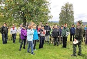 Höstens sista vandring gick till Gråbuan, där seniorerna guidades av Jan Frimodig. Nu är  värmen tillbaka och vandringarna likaså. Foto: Maj Kiltäpp.
