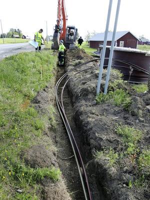 Dragning av kabel utanför Lorås 2016 i samband med Skanovas utbyggnad av rikstäckande nätet. Men bredbandsutbyggnaden på kommunal nivå försenas framöver i Hammerdal och några byar.