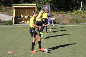 Den fotbollsprofil som erbjuds på de kommunala skolorna hjälper Nynäshamns kommun att behålla sina elever, påtalar insändarskribenten.