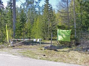 Utlfykten anordnades av Naturskyddsföreningens skogsgrupp. Foto: Ove Lennström