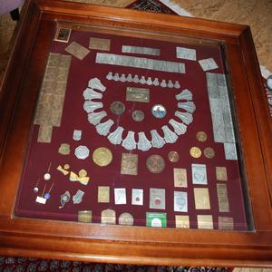 Flera medaljer har Vivi-Anne samlat i ett fint skåp med glasskiva över. Medaljerna som ligger i en halvcirkel är Vivi-Annes SM-medaljer.