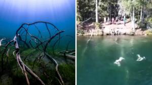 """Häftiga filmen från kristallklara sjön – se Balestjärn under ytan: """"Bästa stället i Ö-vik"""""""