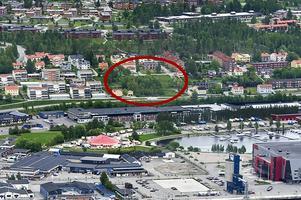 Kvarteret Gullvivan i Lungvik har varit intressant för flera, och nu presenterar Westerlinds ett helt nytt koncept.