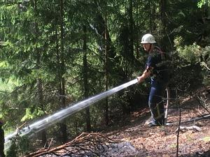 Räddningstjänsten släckte en skogsbrand i närheten av Skräddarbacken i Borlänge på torsdagseftermiddagen.