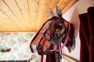 Häst på väggen och hästar på tapeterna.