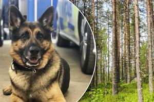 Polisen Sacko blev hjälte när en man skadat sig i skogen och anmäldes försvunnen. Foto: Polisen Dalarna