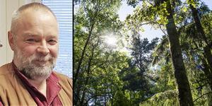 Örjan Kardell, skogshistoriker på Uppsala universitet, ser inget hot mot skogen i framtiden. – Jag är ganska positiv, träden och ekosystemen kommer inte vara någon skillnad på om femtio eller hundra år. Foto: Privat/TT