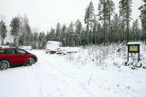 Vi parkerar vid ingången till ett naturreservat. Peter Noresson vill visa att alldeles vid reservatet råder det vanliga skogsbruket, som synes.