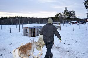 Under kalvningstiden försvinner Jörgen in i fjällvärlden. Tills dess har han mycket annat att sköta om på gården i Foskros.