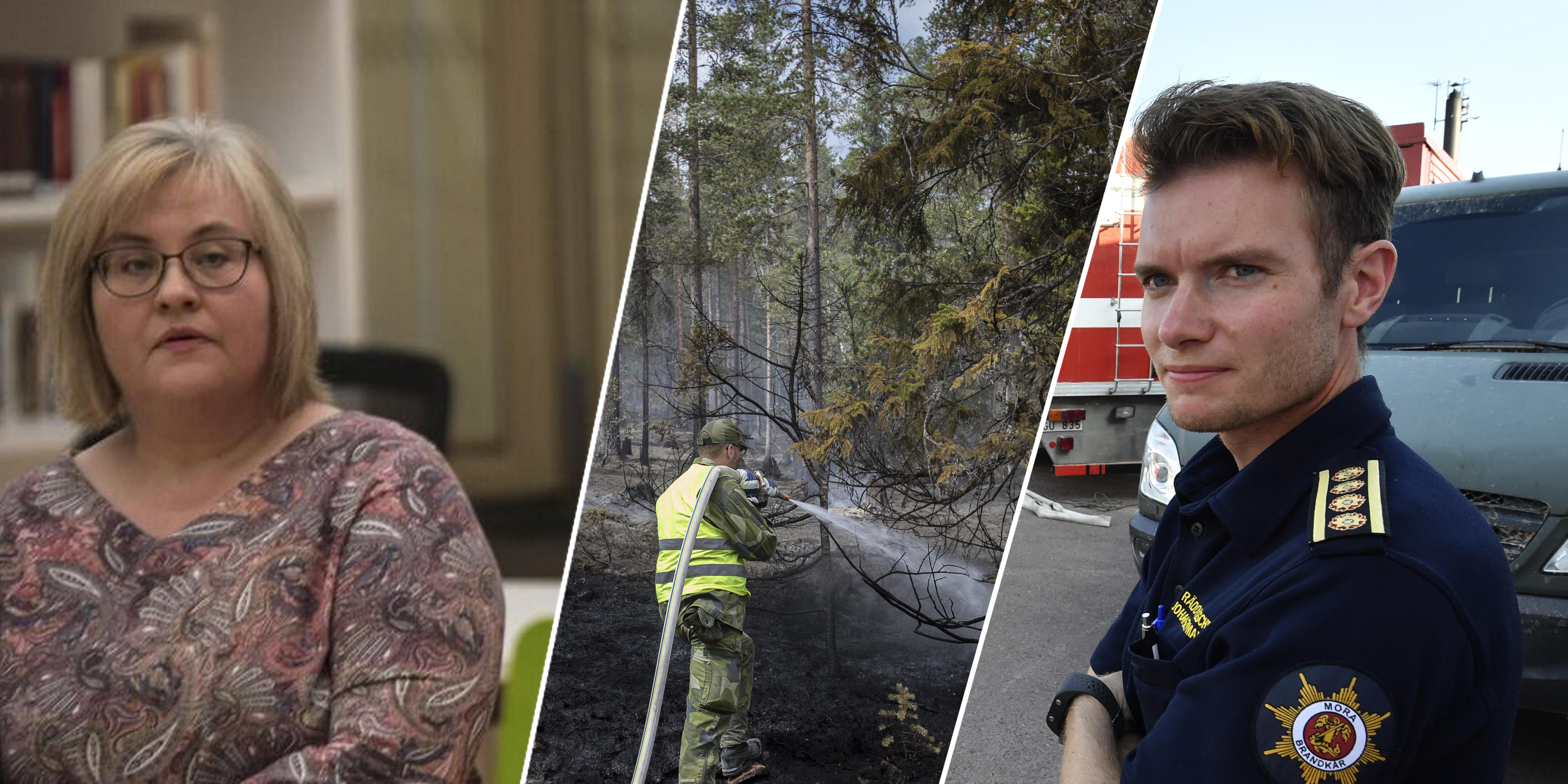 Bilden är ett montage. Foto: Jonas Hasselqvist, Nisse Schmidt, TT