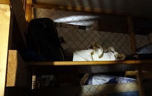 I ett förråd som drogterapeuten hade tillgång till hittades narkotika. Foto: Poisen