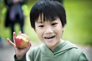 Alexis Tipsen hittade ett magiskt äpple i skolväskan.