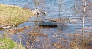 Studsmatten är bara en av många ting som står i sjövattnet i stället för på land.