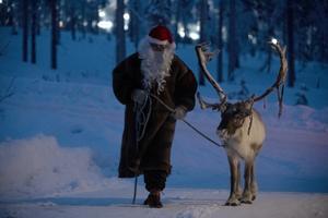 Jultomten med sin dragren på stugbesök på julaftonens kväll på Himmelfjäll.