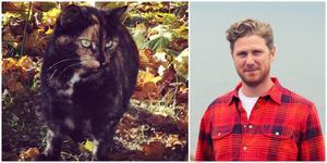 Jaktvårdskonsulenten Jesper Einarsson har svårt att tro att ett annat djur skulle lämnat katten Daisy lemlästad utan huvud, ben eller svans.