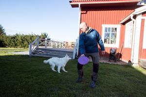 Hunden Frost pockar på uppmärksamheten och har snart en frisbee att hämta.