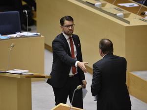 Jimmie Åkesson och Stefan Löfven i en partiledardebatt i riksdagen. Foto: Anders Wiklund / TT