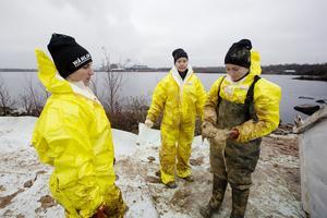 Amanda Sjöblom, Louise Juhlin,  och Ofelia Linander är saneringstekniker och de städar upp efter oljeutsläppet.