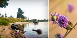 I Sverige gäller ett generellt strandskydd vid alla vattendrag, innefattande land- och intilliggande vattenområden.