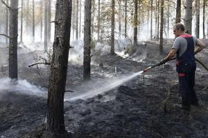 Möckelsjöberget i Utansjö 20 juli: Lars Karlsson har sedan klockan 16 varit ute vid brandplatsen och hjälpt till med släckningsarbetet.