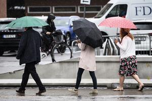 SMHI har utfärdat risk för stora regnmängder i delar av södra Sverige. Arkivbild. Foto: Johan Nilsson/TT