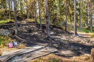 Branden tycks ha börjat vid den nu eldhärjade grillplatsen till höger i bild och sedan spridit sig upp i skogen längs ett långsmalt bälte.Foto: Niklas Hagman