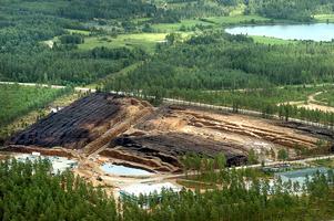 1,3 miljoner stockar, en dryg tredjedels procent av allt timmer stormen Gudrun fällde i Sverige, låg på terminalen i Nifsarp, i Eksjö, i slutet av juli år 2005.