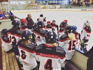 Laget tränar på is två dagar i veckan. Tränare är Ulf Holmqvist. Fler spelare är välkomna, oavsett nivå, berättar Malin Jansson, en av lagledarna. Foto: Privat