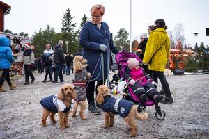 Från Härnösand hade Annelie Hellberg åkt för att för första gången besöka julmarknaden på Norra berget. I barnvagnen sitter barnbarnet Iris och med är också dvärgpudlarna Alfons, Valle och Lazy.