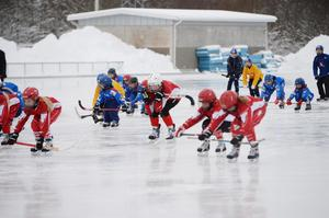 Landslaget i bandy tränade tillsammans med Söråker och Selångers flicklag under lördagen.