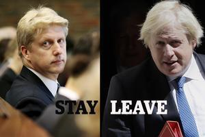 Jo Johnson vill stanna kvar i EU, brodern Boris har varit frontfiguren i att lämna EU.