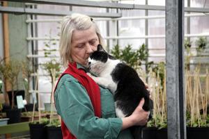 """Stina Bohlin driver Norrängens trädgård med maken Janne Bohlin. Här gosar hon med katten Molly, som fritt kan springa omkring och fånga närgångna möss. """"Vi använder bara biologiskt växtskydd såsom nyttodjur, och även humlor för pollineringen"""", säger Stina."""