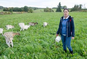 Kristina Kuusiniemi och hennes sambo äger Stengärde getgård, där det produceras getost, sedan i våras. Gården har de tagit över efter Kristinas föräldrar, som fortfarande bor kvar på gården.