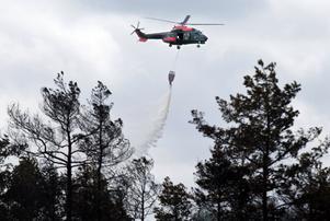 En helikopter vattenbombar elden.